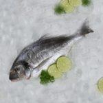 Jakie ryby dla malucha?