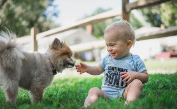 Zwierze domowe - pupil - dziecko i pies